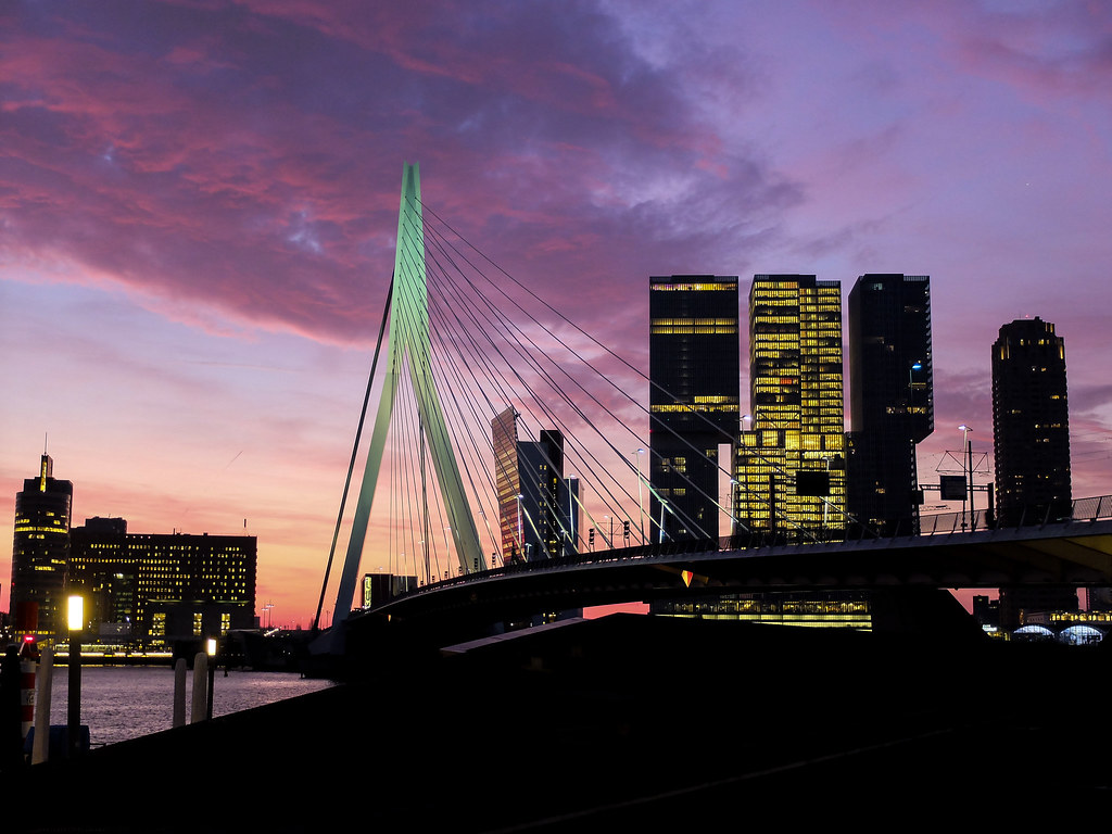 Rotterdam (19 of 44).jpg