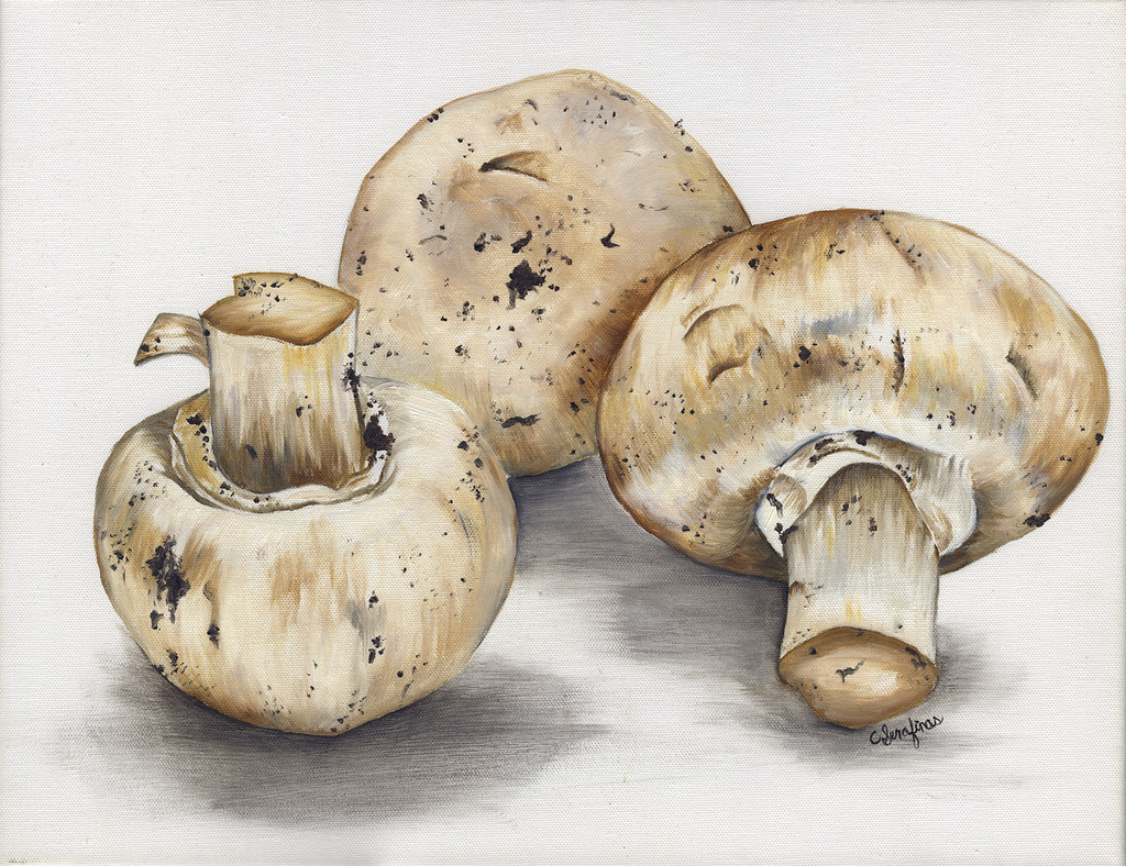 MUSHROOMS RESIZE 3x5