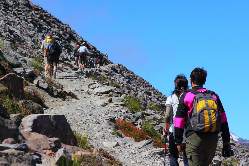 IMG_8549 Burroughs Mountain Trail, Mount Rainier National Park