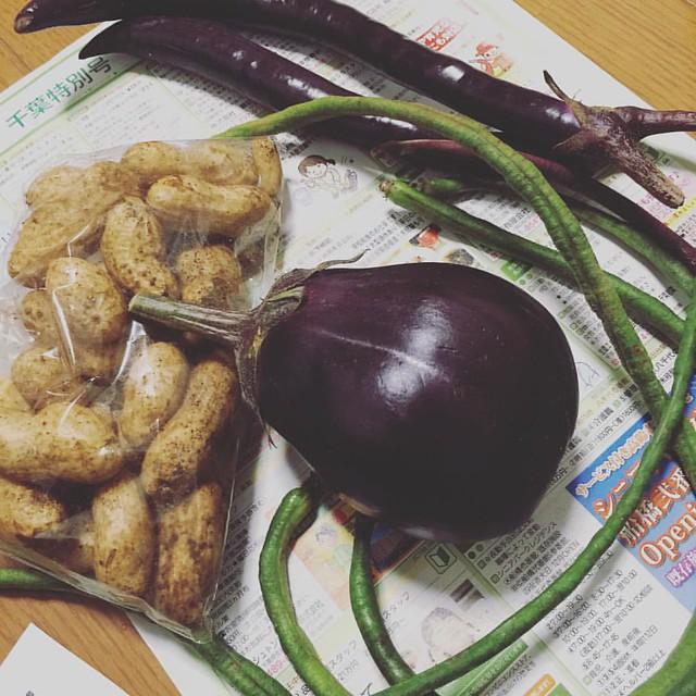 泉州水茄子にまた出会えたしあわせ。 #Kiredo #野菜