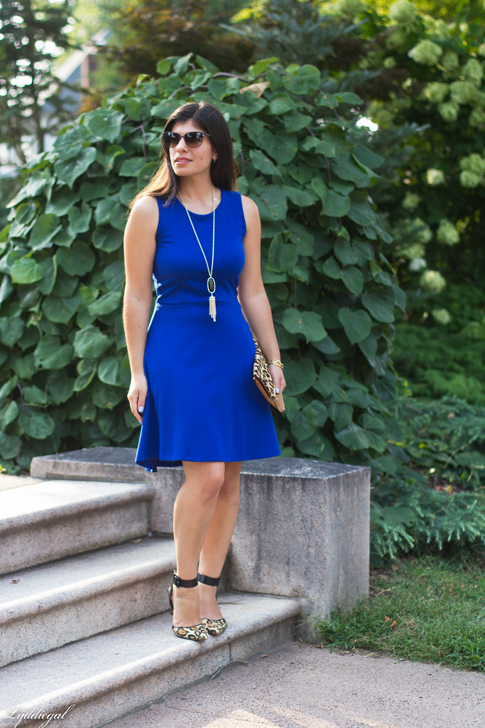 cobalt dress, leopard pumps and clutch-2.jpg