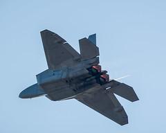 sukhoi su-35bm(0.0), lockheed martin f-35 lightning ii(0.0), mcdonnell douglas f-15 eagle(0.0), mcdonnell douglas f-15e strike eagle(0.0), lockheed martin f-22 raptor(1.0), aviation(1.0), airplane(1.0), wing(1.0), vehicle(1.0), fighter aircraft(1.0), jet aircraft(1.0), air force(1.0),