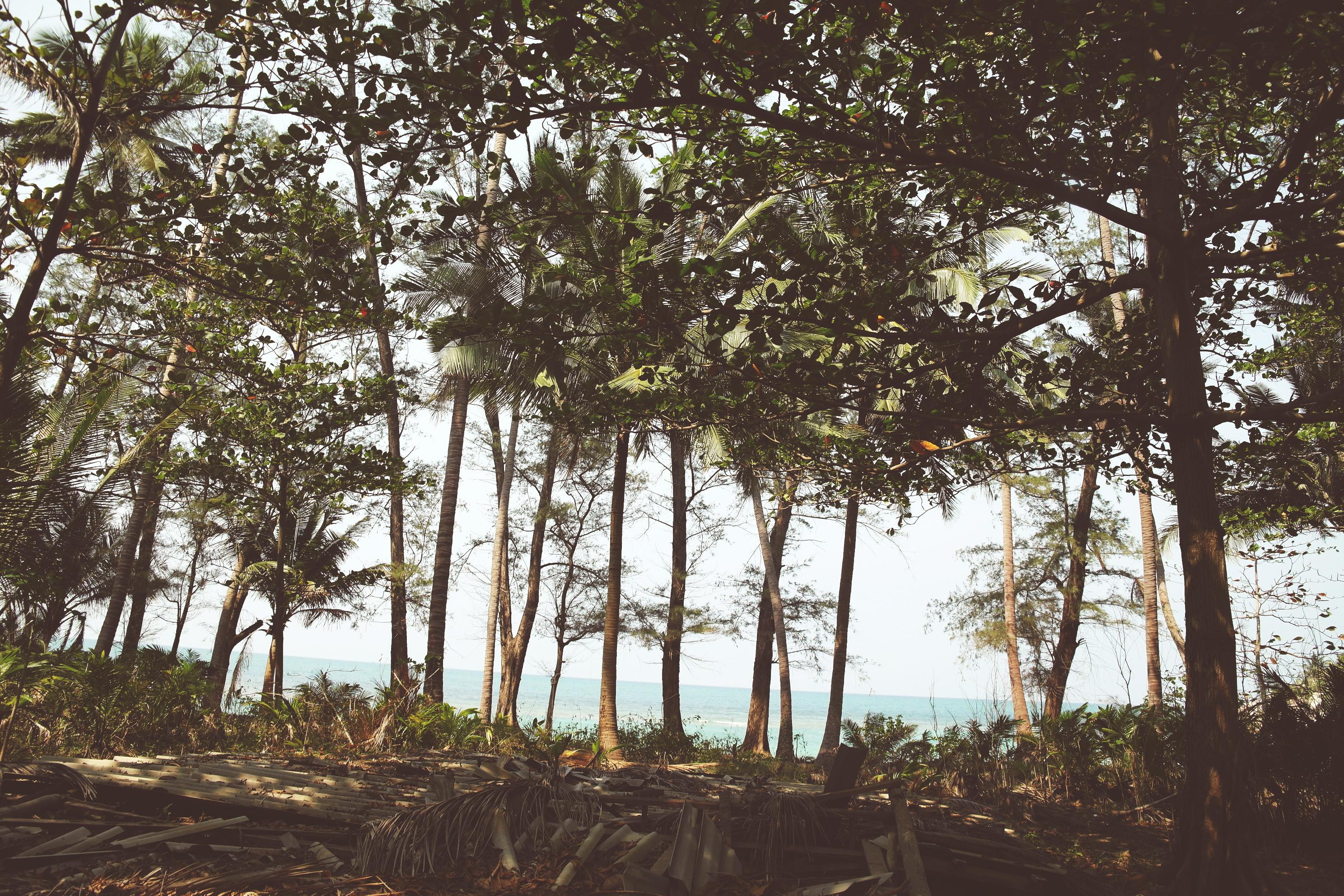 koh phangan real secret beach