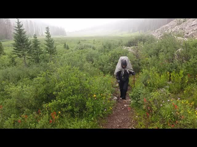 4495 Video of the rain falling as we hike toward some potential shelter under some trees on the Rock Creek Trail