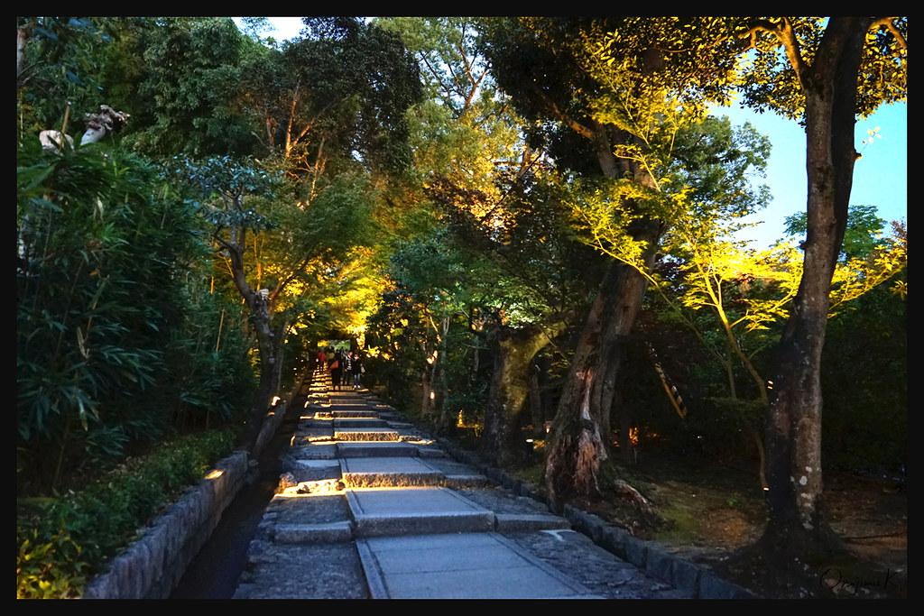 日本京都_高台寺 夜燈.01
