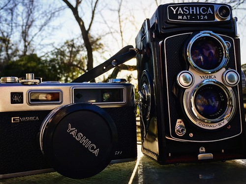 Yashica brothers. #film