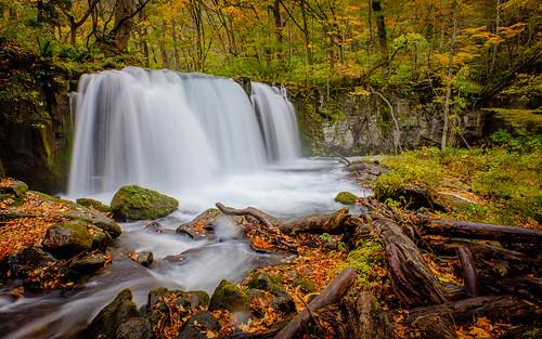 autumn yellow japan river season waterfall fresh jp aomori fujifilm tohoku autumncolor towada aomoriken oriase xt1 choshiotaki towadashi