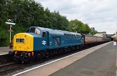 UK Class 40