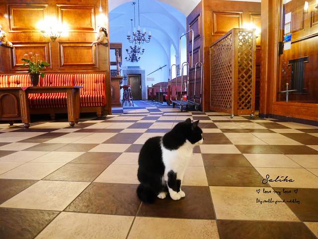 Hotel Ruze薔薇飯店Krumlov庫倫諾夫 (32)