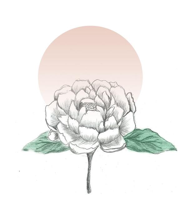 pink peony ink + digital