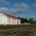 March 18, 2014 - 17:05 - Seddon was erected as part of the Blenheim-Awatere line and was completed in 1902: the railway followed the next year. Seddon was the southern terminal of the Main North Line for 9yrs until extended to Ward in 1911, and it was nearly 30yrs before work on linking the two railheads began again.  Seddon had a very quiet history serving the local farming community, and was always regarded as a minor stop on the Main North Line, even after the completion of the line in 1945. Farm-related freight has been its main traffic.  In 1966 an earthquake brought down the station chimney. In 1969 public toilets were mooted but the idea was abandoned.  From 1986 the station was retained for track gang use, but has recently been sold. The platform is still used by Coastal Pacific passengers. +++++  Seddon is a largely-original variant of the Vogel period gable station - indeed it's one of the last examples of Vogel Gable station built. It (and other small stations such as Middlemarch) was not considered of sufficient status to warrant a verandah.