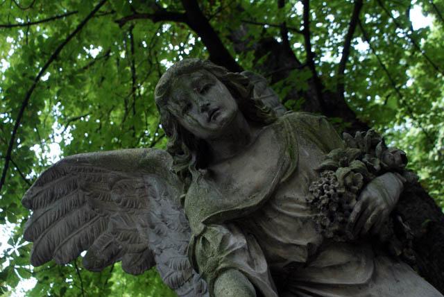 Un ange se penche sur vous dans un océan de verdure.