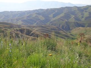 Cordilheira de Fergana, Quirguistao