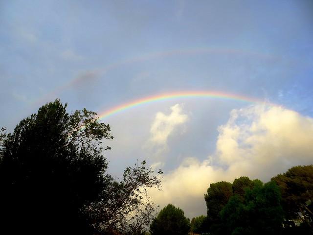 rain! and rainbow!