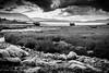 The Scottish Highlands BW-4 by broadswordcallingdannyboy