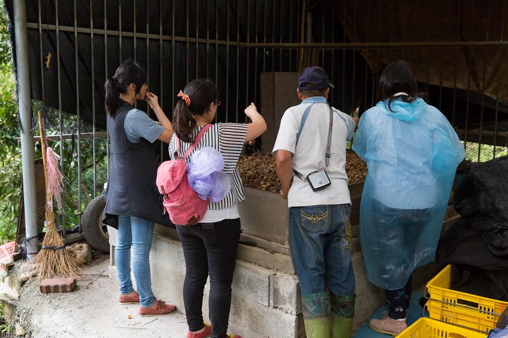 龍湖莊生態農莊 (33)