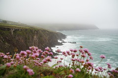 Irland_2870
