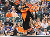 The Oriole Bird by nflravens