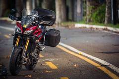 Yamaha MT 09 Tracer -2877.jpg