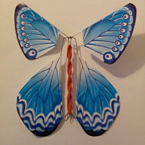 Mariposa-sorpresa de Trueba Ikastetxea