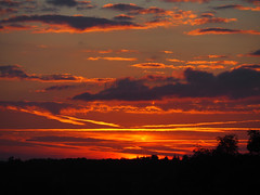 Farley sunset 29