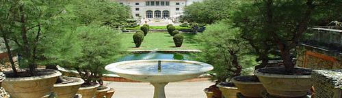 Landscaping & Outdoor Management