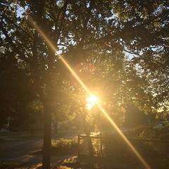 20 November 2016 #sunset #samespotforayear #vso #vsocam #nofilter