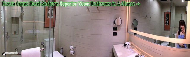 Eastin Grand Bathroom Panorama