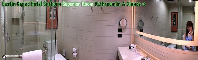 Eastin Grand Bathroom Panorama