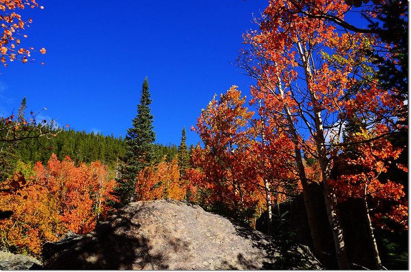 2015 Rockies in Fall, Bear Lake Area (8)
