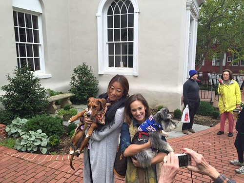 Blessing of the Animals at St. John's in Georgetown 2015