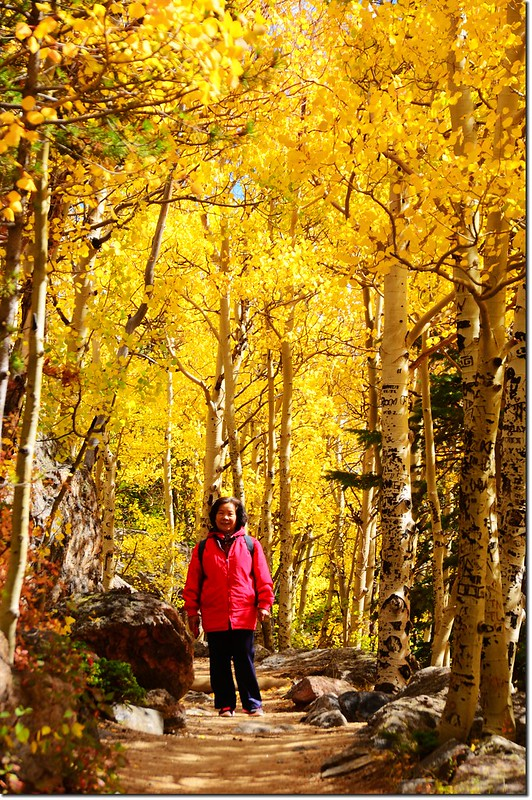 2015 Rockies in Fall, Bear Lake Area (33)