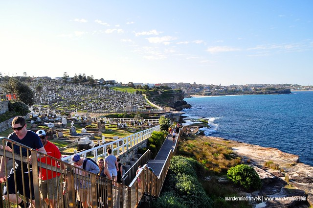 Coastal Walk along Waverley Cemetery