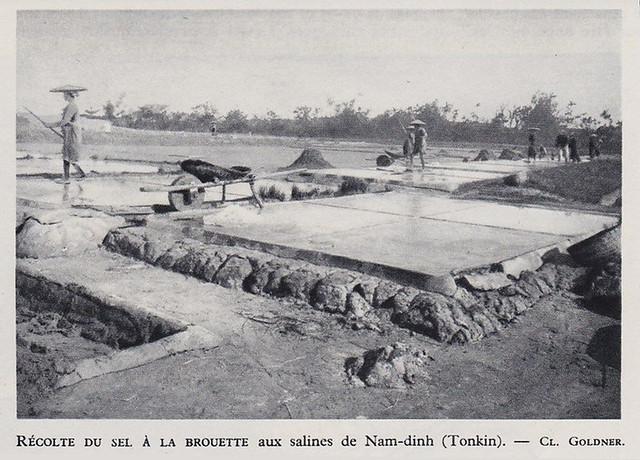 1953 -- INDOCHINE TONKIN RECOLTE DU SEL SALINES DE NAM DINH