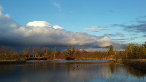 ontario canada wildlife aurora wetlands marsh mckenzie cloudsstormssunsetssunrises