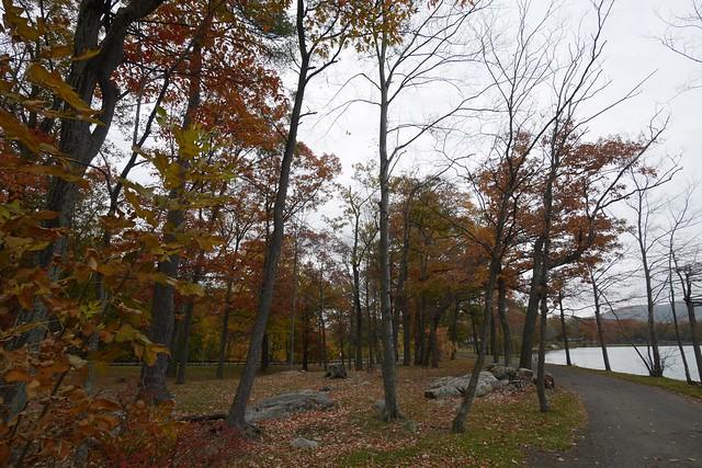 日, 2015-11-01 09:31 - Hessian Lake at Bear Mountain