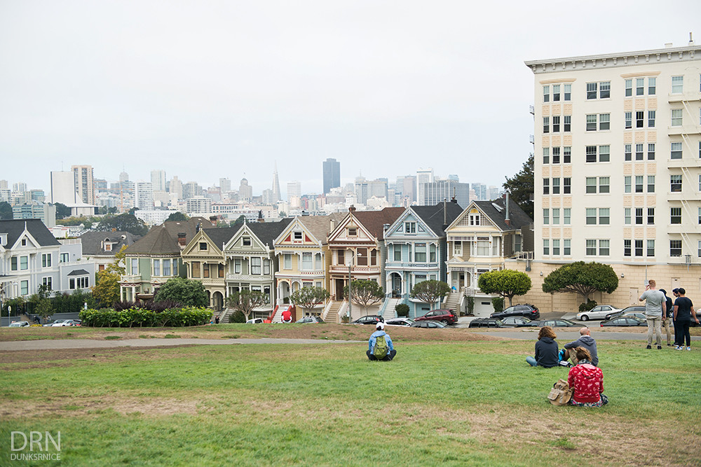 Painted Ladies.