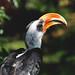 Birds, Zoo de Besançon. by mademoisellewho