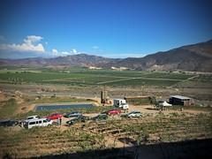 Ruta del Vino & Valle de Guadalupe