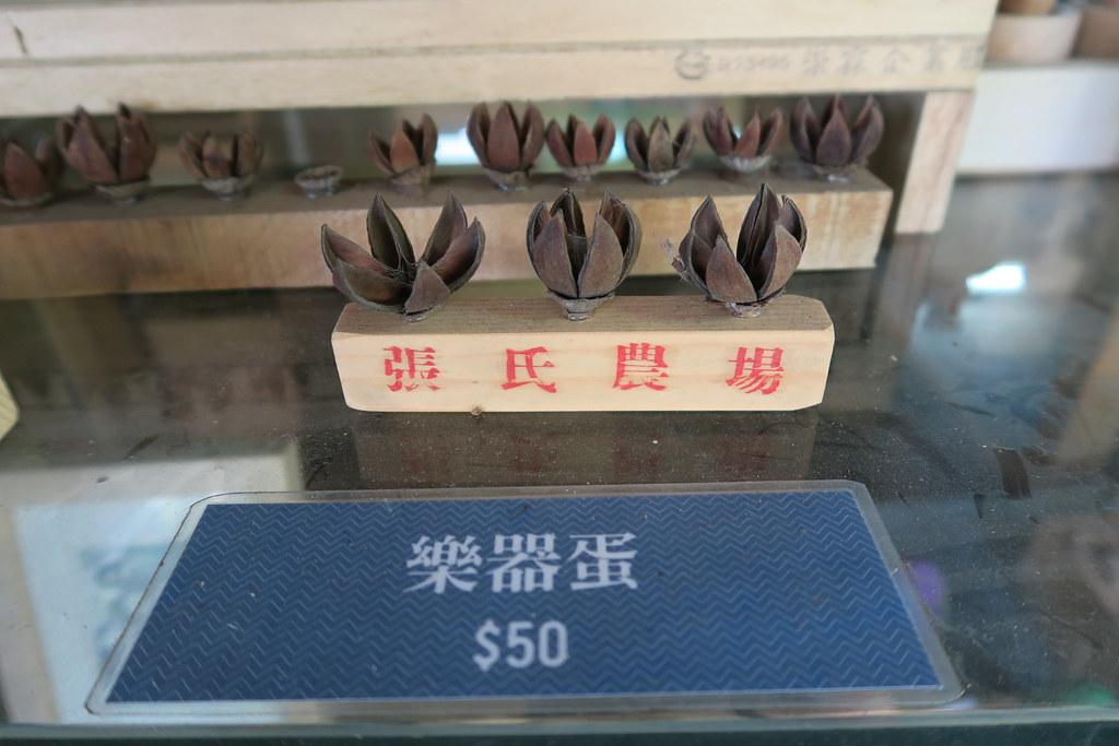 台南市新市區張氏農場 (113)