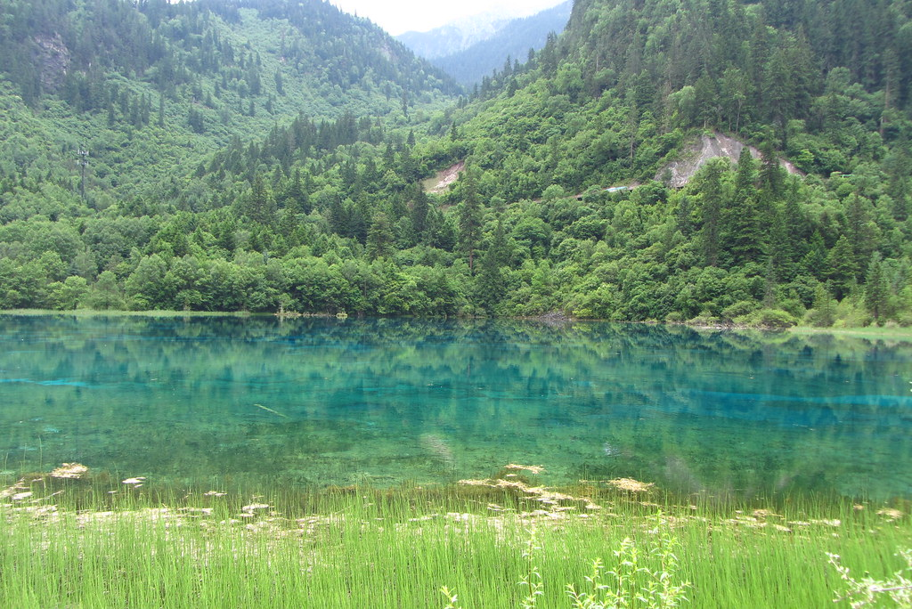 Jiuzhaigou, June 2011