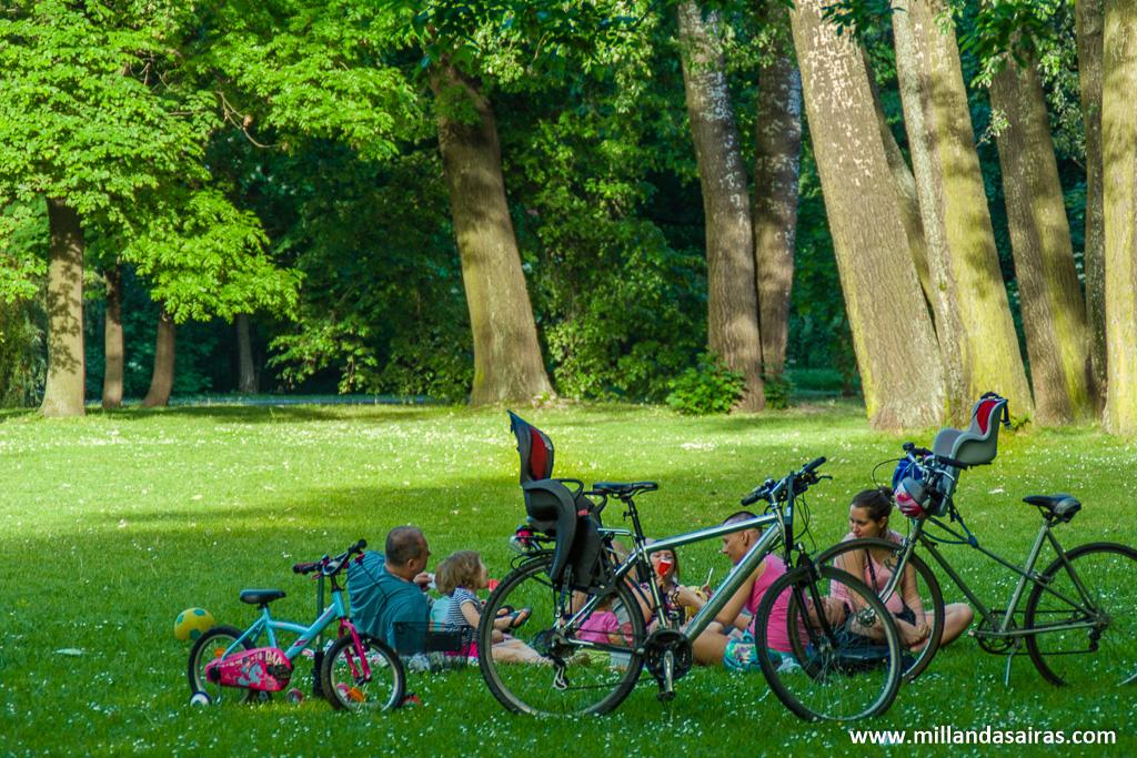Tarde de relax en el parque Łazienki