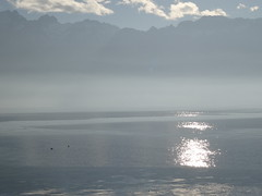 Lac Léman-Vevey