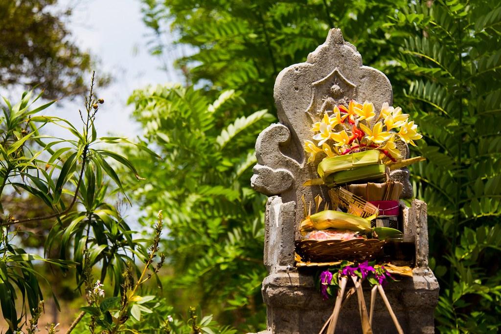 Bali -3387