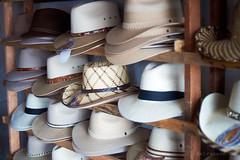 hats at macaji .