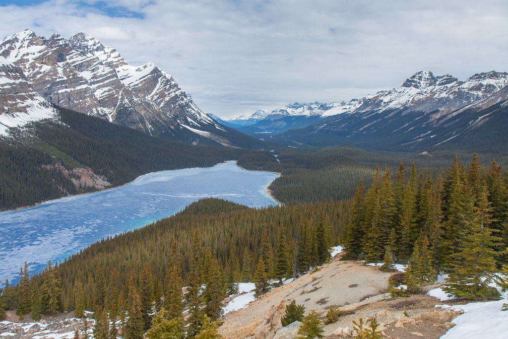 Banff National Park, Peyto Lake