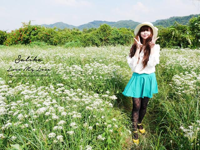 照片 (4)