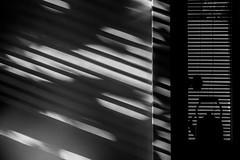 IMG_1936-Edit-Edit-web.jpg