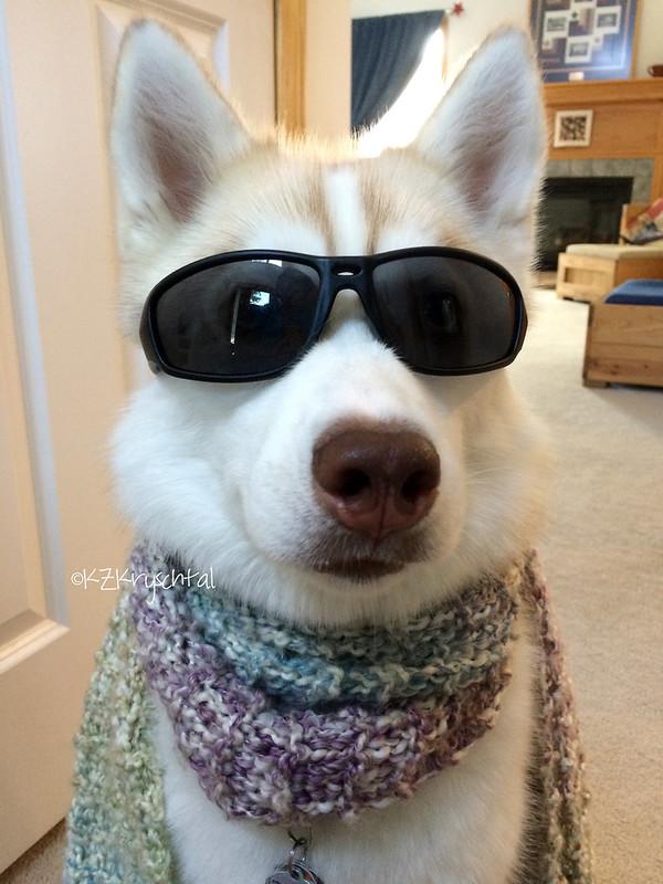 IMG_2767MagsGlassesScarf