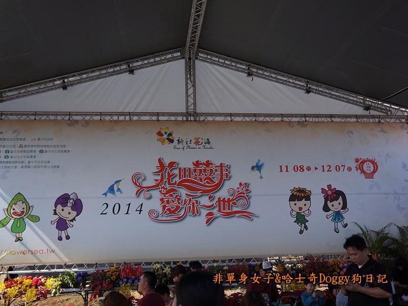 2014臺中新社花海24